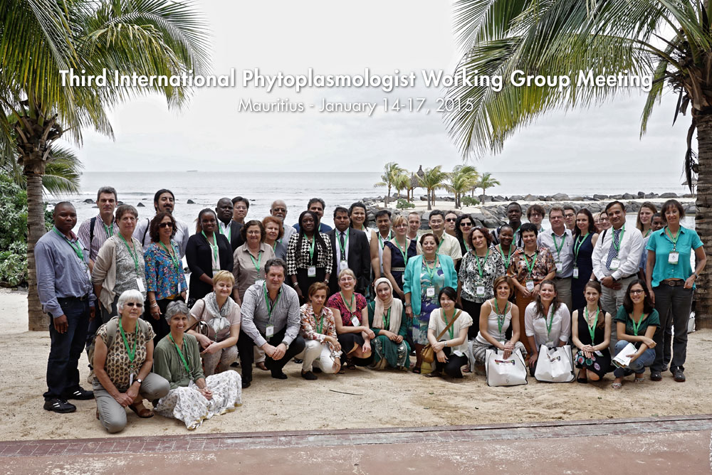 IPWG2011GroupPicture_small